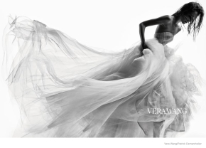 Fairytale Dress: Vera Wang Perfection